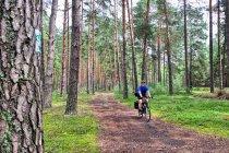 Rowerem po lasach Łódzkiego