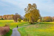Rowerem po żółto-zielonej Brandenburgii