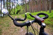 Rowerem przez park narodowy