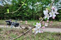 Rowerowa wiosna na Kaszubach