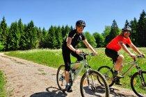 Rowery górskie w Dolnej Saksonii