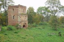 Ruiny zamku w Kurortnoje