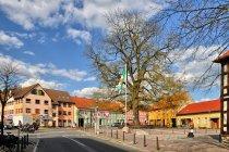 Rynek w Biesenthal