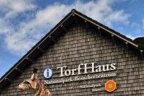 Ryś, jeden z symboli Harzu