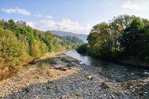 Rzeka Soła w Rajczy