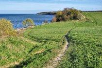 Ścieżka rowerowa nad Zatoką Pucką