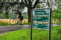 Ścieżka rowerowa w lesie Almindingen