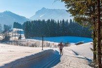 Seniorzy na biegówkach w Austrii
