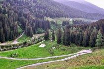 Serpentyny w kierunku doliny Valsugana
