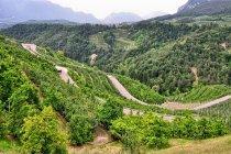Serpentyny w Val di Non