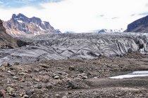 Skaftafellsjökull - lodowiec Skaftafell
