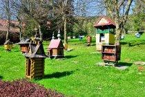 Skansen pszczelarski w Kamiannej