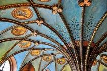 Sklepienie biblioteki i oryginalne, naturalne farby