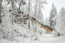 Skocznia narciarska w Dusznikach