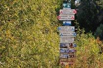 Słowackie drogowskazy turystyczne i rowerowe