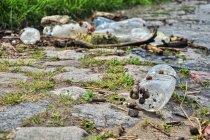 Śmieci z Wisły