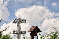 Smrek - szczyt, w tle wieża widokowa