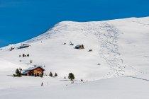 Śnieżne wzory