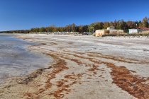 Sokół - ciężki schron nad Zatoką Pucką