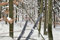 Stanowisko serwisowania nart biegowych