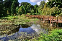 Staw w arboretum w Bolestraszycach