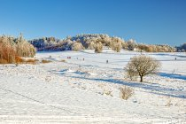 Stołowogórski krajobraz