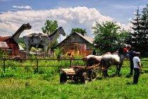 Surrealistyczny widok z targu w Bogdan Voda