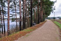 Szlak Green Velo w Płaskiej