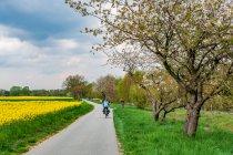 Szlak rowerowy drogą tylko dla rowerów