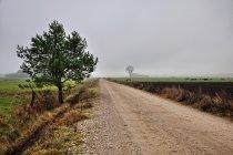 Szlak rowerowy koło Kinic