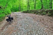 Szlak rowerowy z Chmielna do Kartuz