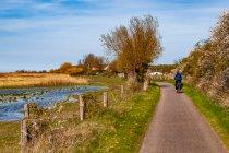 Takimi drogami prowadzi droga rowerowa wybrzeżem Bałtyku