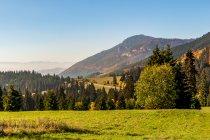 Tatrzańskie klimaty po słowackiej stronie