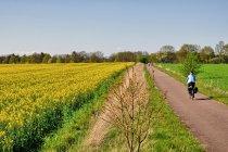 Tour Brandenburg za Rheinsbergiem