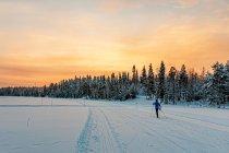 Trasa biegowa na jeziorze Talvijärvi
