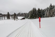 Trasa narciarska koło Ramsau