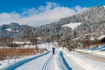 Trasa narciarstwa biegowego w Kaiserwinkl