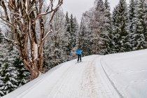 Trasa w kierunku wzgórza Rittisberg