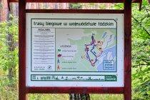 Trasy biegowe koło Bronisławowa