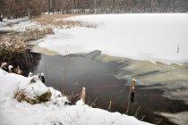 Ujście potoku do Jeziora Czarnego