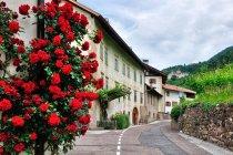 Ulica w miejscowości Montagna