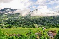 Val di Fiemme - słynne podejście pod Alpe Cermis