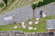 Verso l'Alpeggio - Canal San Bovo