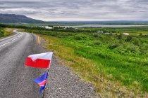 W drodze do Þingvellir (Thingvellir)