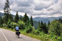 W drodze ku Bukowinie