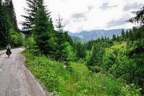 W drodze na Prislop