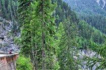 W drodze na przełęcz Albula