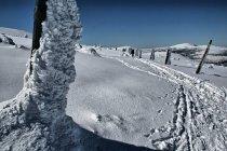 W kierunku Przełęczy Karkonoskiej