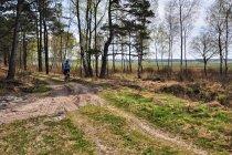 W okolicach Słajszewa