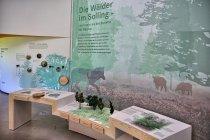 W Wildpark Haus w Neuhaus im Solling